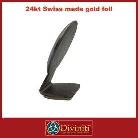 Guru Nanak Diviniti 24ct Gold Foil Car Frame